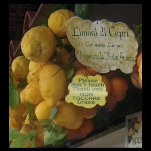 I limoni di Capri